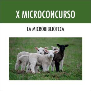 X Microconcurso La Microbiblioteca-cubierta
